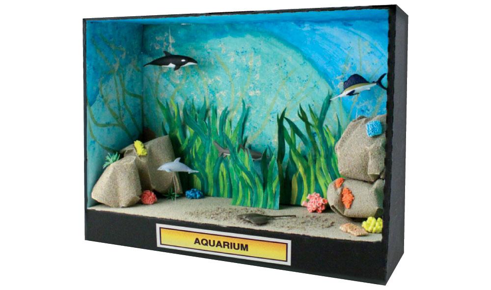 Ocean ecosystem diorama ideas car pictures